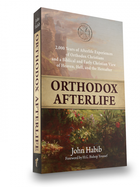 OrthodoxAfterlife3DCoverFrontPageImage (reduced size and cropped half)